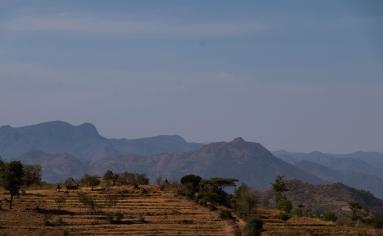 100 coltivazioni di teff fra Konso e Ganada