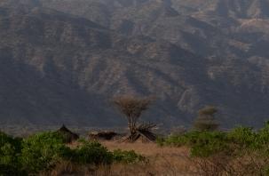 103 accampamento zone Arbore