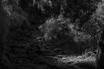 18 sentiero nelle Simien Mountain