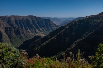 20 Simien Mountain