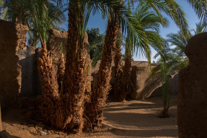 42 resti della vecchia Karmakol