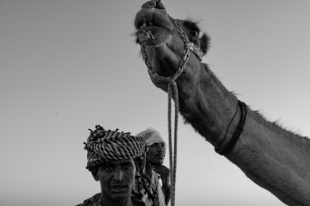 47 allevatore cammelli