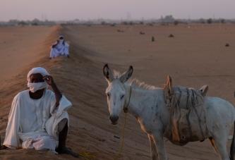 47 spettatore corsa di cammelli