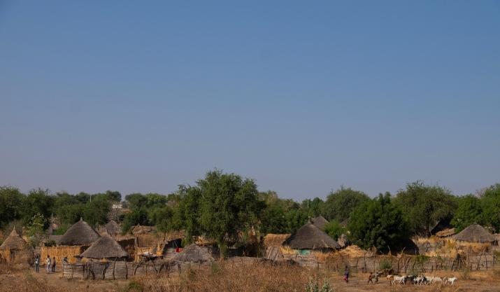 70 villaggio tipico della zona fra Al Qadarif e Metema