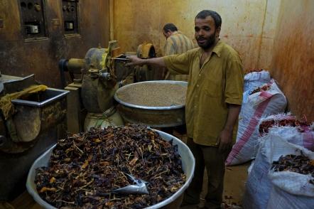 lavoratore spezie cairo