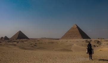 piramidi e cavallo egitto